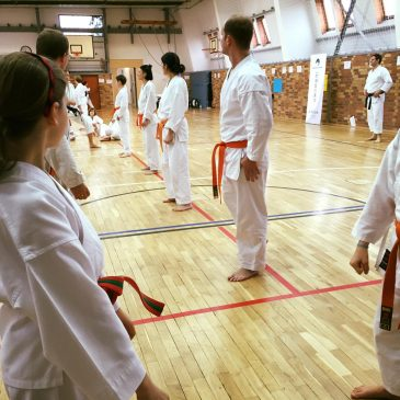 JKA Karate Trainingsgruppen
