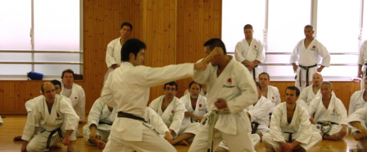 JKA Shotokan Karate